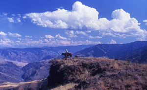 A single horseback rider stands at the edge of a sharp butte with canyons in the background.