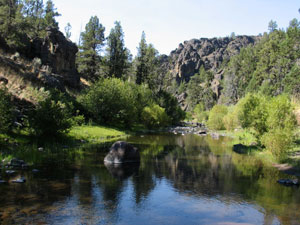 A clear river flows through a desert landscape with green shrubs growing along the banks.