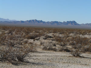 The horizon is edged out by sharp mountains, their bottoms lost in mist.  The fore is a sparse looking desert.