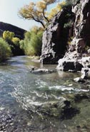 Photograph taken in  the Aravaipa Canyon Wilderness