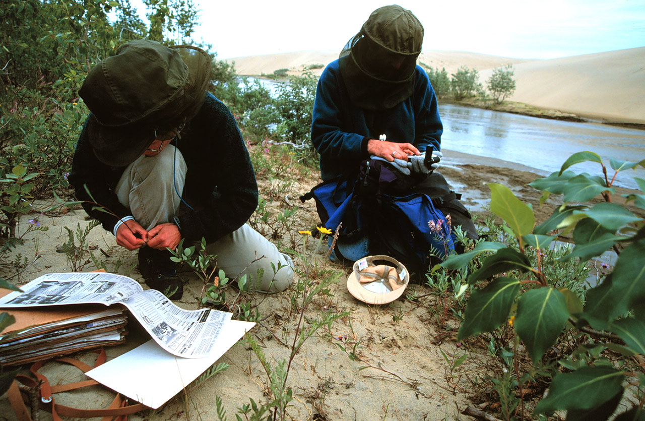 Scientists doing field work