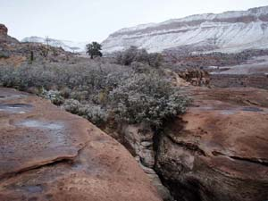 A small island of brush standing between two large slabs of sandstone, looking out to a desert valley beyond, dusted with a thin white layer of snow.