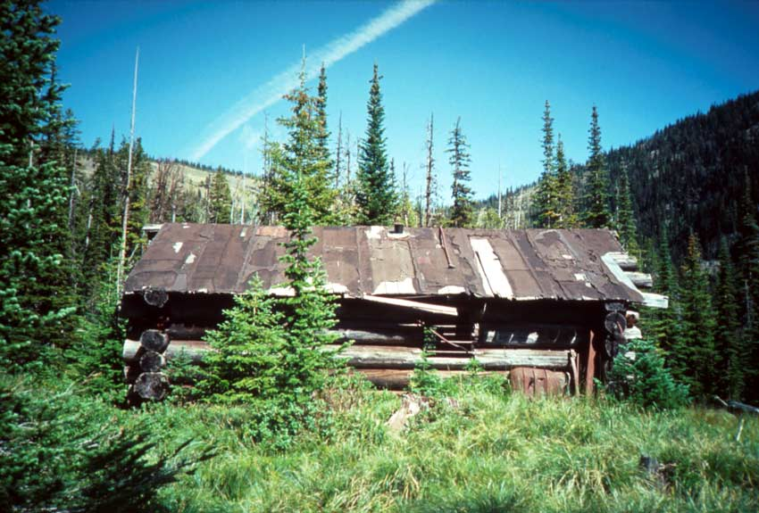 A dilapidated log cabin, surrounded by trees and brush in a forest valley, the deep blue sky above contains a single jet contrail.