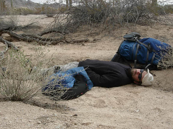 Backpacker takes a nap on the ground near desert foliage.