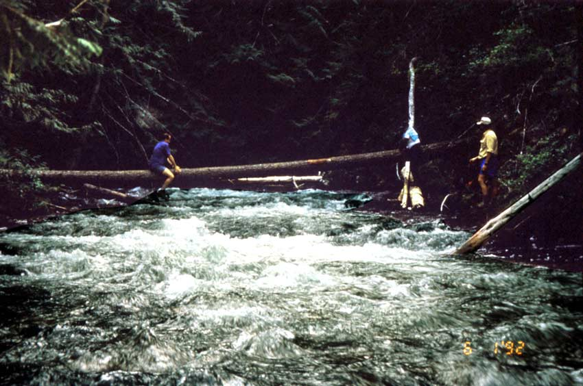 Two people stradle a large log, crossing above a small rushing river.