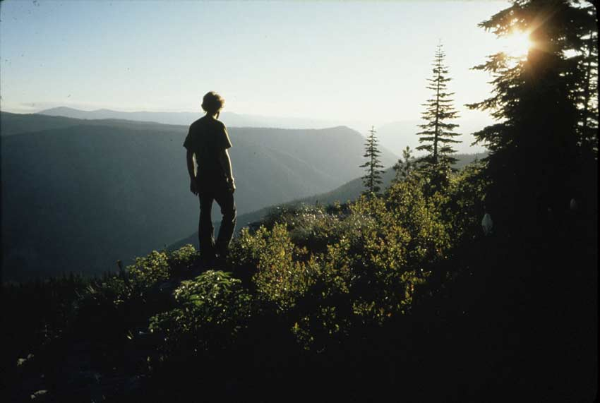 Hiker looking at sunset with trees in the foreground and ridges in the background.