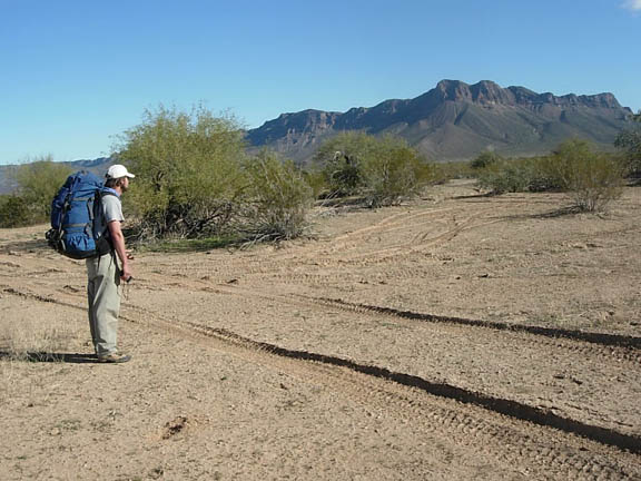 A backpacker examines tire tracks that have left deep marks in the ground. Human-size desert shrubs occupy the area in clusters and the spine of a mountain formation separates the clear blue sky from the landscape.