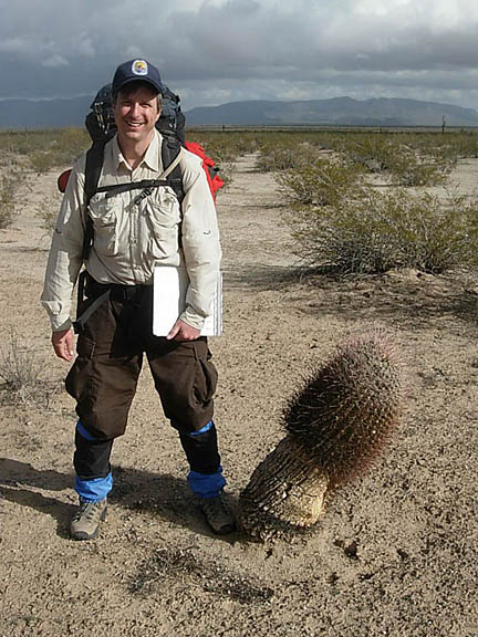 A infantile Saguaro that was run over by a truck and has been healing from the damage. A backpacker poses next to the cactus.