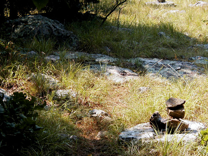 A small rock cairn sitting in the sun, along the edge of the forest shadow.