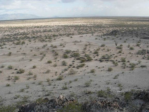 A photo of the Creosote Flats from a position above the flats. There are very small desert shrubs sparsly populating the flats.