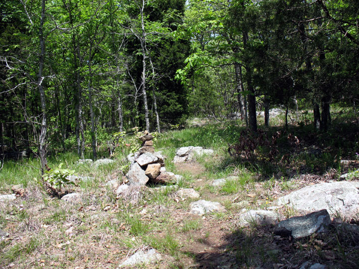 A large rock cairn sitting along the edge of a small trail through the open woodland.