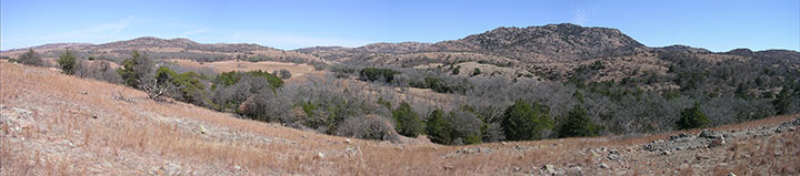 A panoramic view of rolling hills and sporadic trees