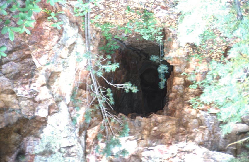 Looking into the dark mouth of a small cave or mine shaft.