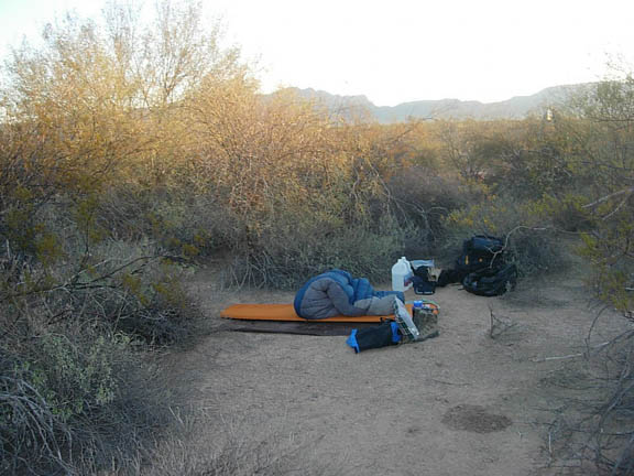 Backpackers have set up camp among desert trees and shrubs. The photo was taken at either sunrise or sunset and the last few rays are cast on the tree tops and mountain tops in the background.