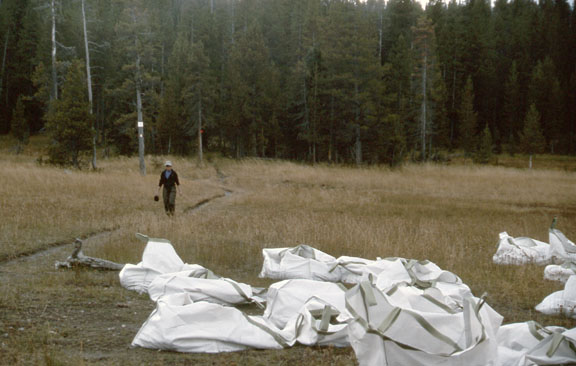 A trail worker walks toward trail work sacks in the Yellowstone National Park.