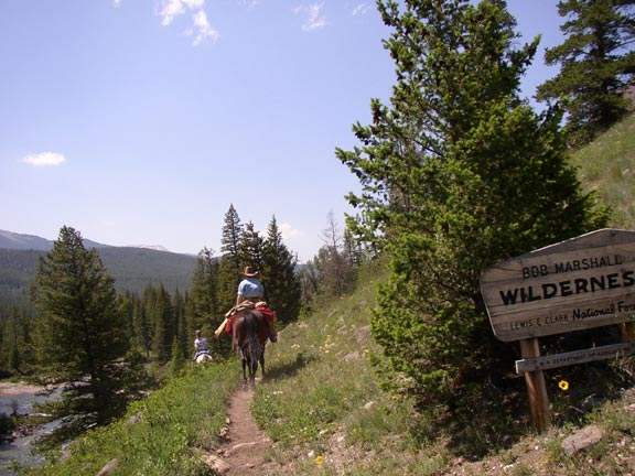 A person on horseback passes a wilderness sign, along the edge of a narrow path, along an open forested slope.