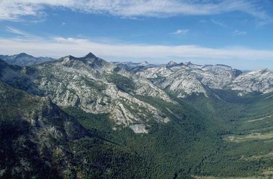 Looking up a large forested valley to a myriad of jagged peaks beyond.