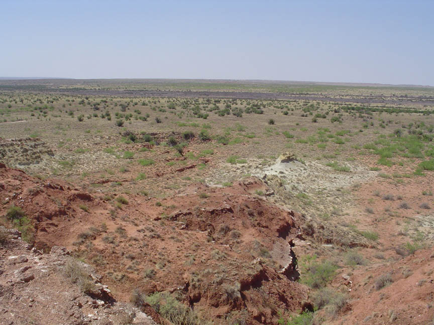 An arid landscape, brown dirt mounds in the foreground fade into gray grassy plains dotted with tufts of brush, leading off to the flat horizon.