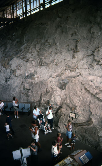 Visitors explore the Dinosaur National Monument.