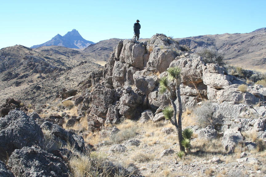 A person standing on a rocky outcropping, overlooking the harsh desert landscape, stretching away to a massive rocky peak looming far in the distance.