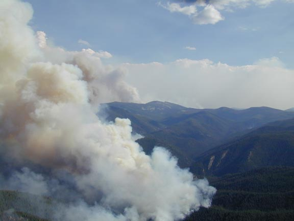 An aerial view looking down over forested hills, billowing with dirty white smoke high into the blue sky.