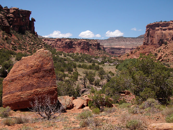 Red sandstone canyon