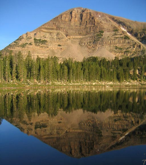A mirror image of a pointed peak rising high above green forest  along the base, along the shore of a placid lake.