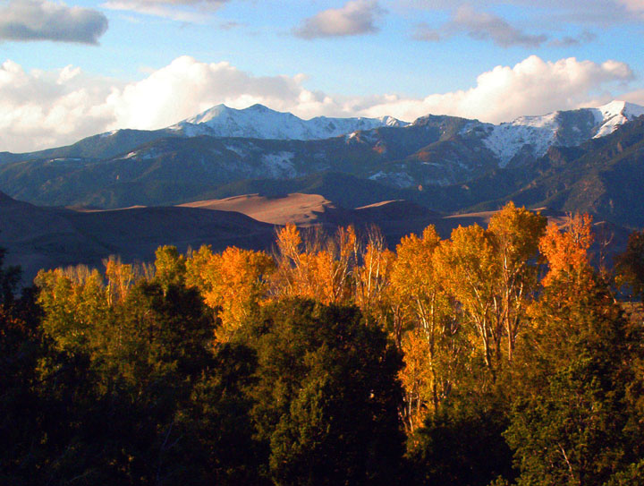 Golden fall foliage catching the fading evening light, with bronze-colored sand dunes and snowcapped mountain peaks in the background.