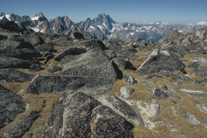 The rocky landscape is almost alien, with subdued gold grasses and far off blue mountains. Snow can be seen in the distance, but the gray stones in the foreground are bare.