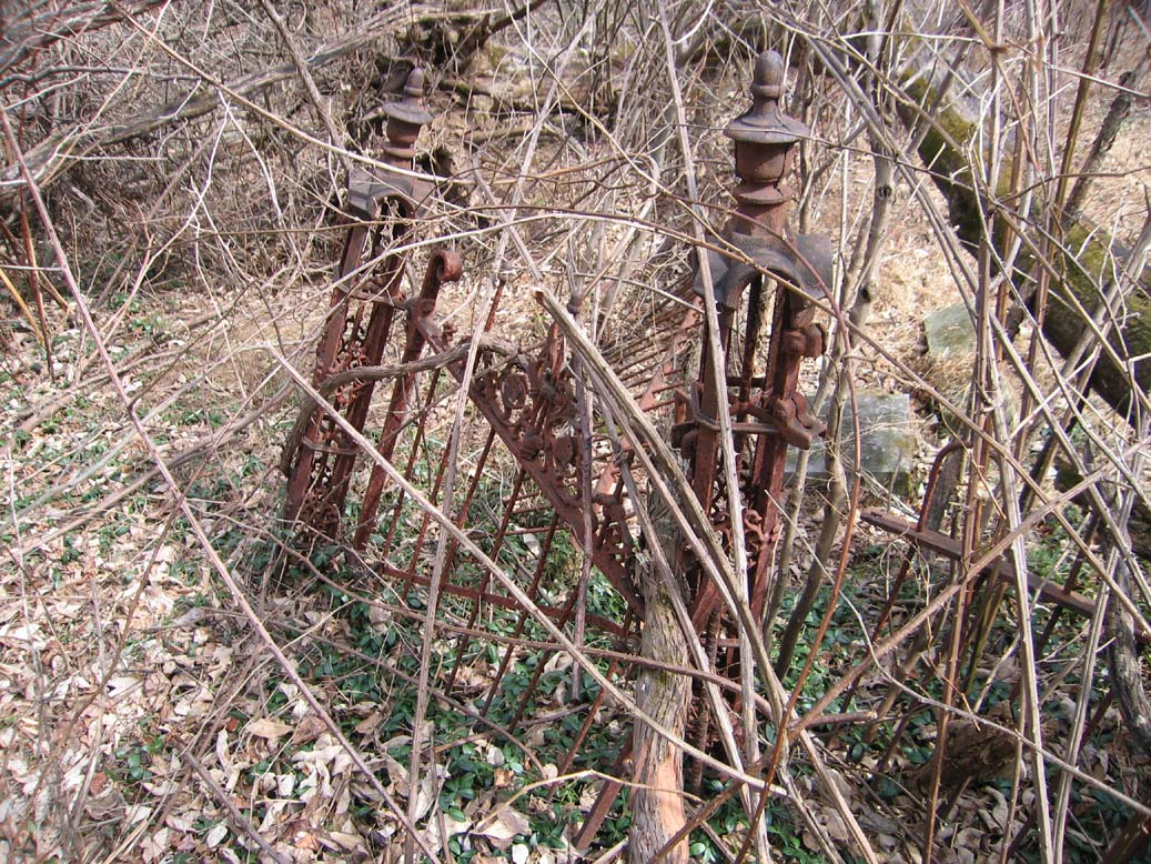 A rusty fence, tangled and almost hidden in the surrounding brush.