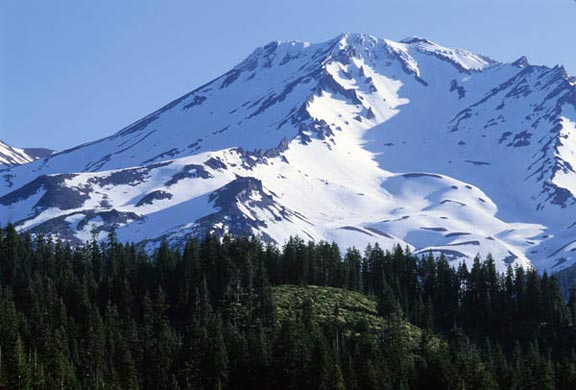 Mt. Shasta, a cascade volcano, is covered in snow and contrasts with its base where a concentration of coniferous trees is green with life.