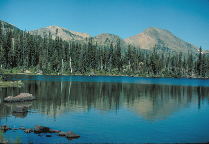 Cool blue waters of a lake reflect a shoreline of tall trees and distant mountains.