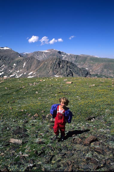 A child explores the alpine tundra in Custer National Forest. The tundra is rocky and green with foliage and mountains in the background seperate the clear blue sky from the tundra landscape.