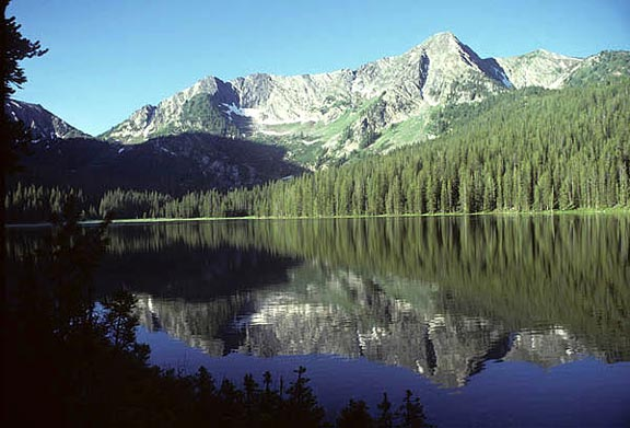 Johnson Lake mirrors a mountain ridge in the Beaverhead-Deerlodge National Forest. The ridge houses a thick concentration of pine trees and other lush foliage.