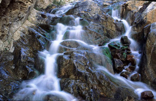 A water spring cascades down a tiered rack face in Surprise Canyon, Panamint Range.