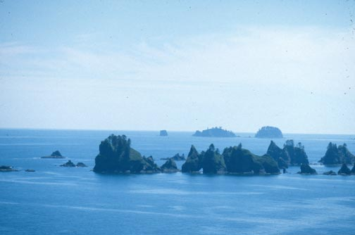 A jagged cluster of small rock pinnacles breaking the blue horizon over the water.