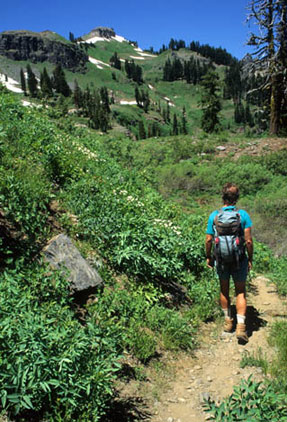 A hiker in blue grear treks along the Pacific Crest Trail on a sunny, cloudless day. The trail is surrounded by green foliage and the hills in the back have a few patchs of snow.