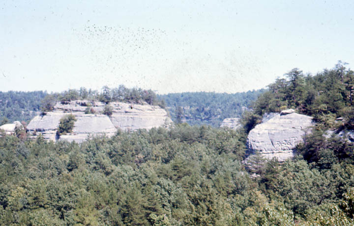 Two large gray rock outcroppings rise from the surrounding green forest like islands from water.