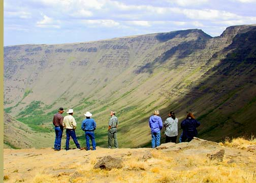 A small group of people stand overlooking a massive U shaped valley, dotted with green foliage.