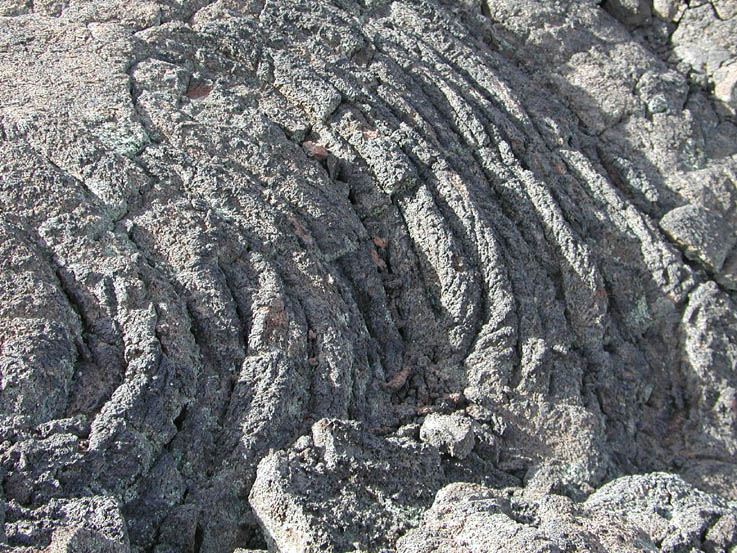 A close-up of textured gray rock.