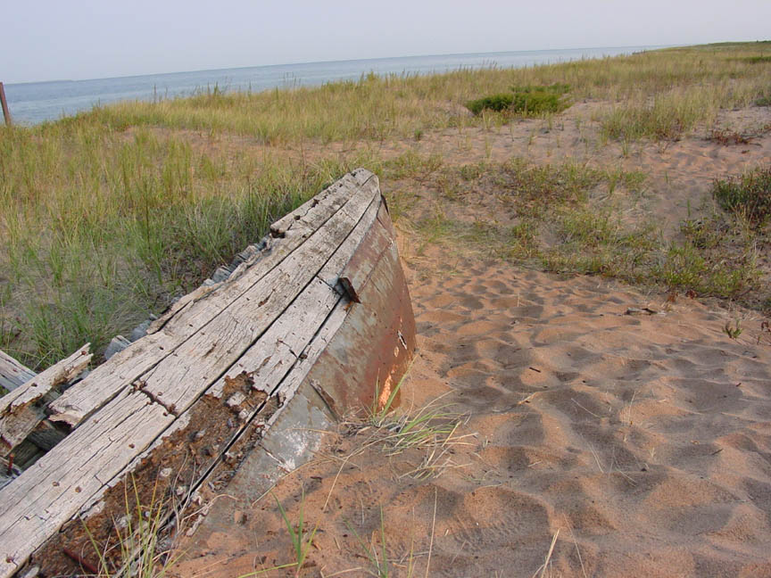 The weathered remains of a small wooden boat virtually buried in the sand, and covered with grass, near the edge of the water.