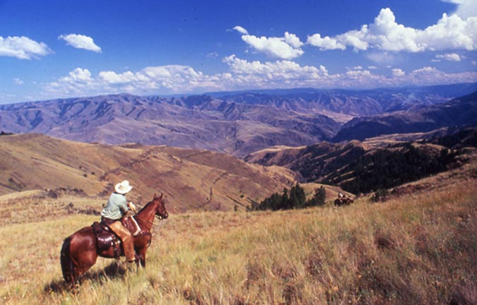 A single horseback rider rides through a prairie overlooking the canyons below.