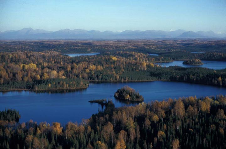 A series of small lakes, some with islands, dot the Alaskan forest in autumn.