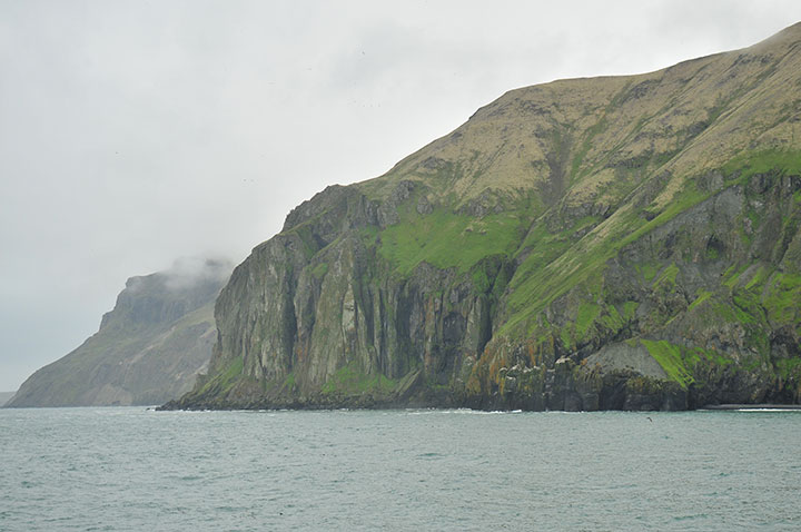 Steep green cliffs fall to the ocean