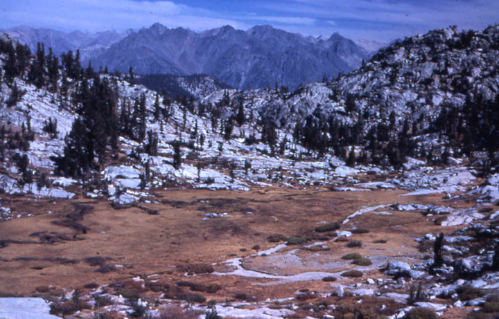 A small alpine bowl of a golden meadow surrounded by gray rock dotted with trees, and jagged mountains in the distance.