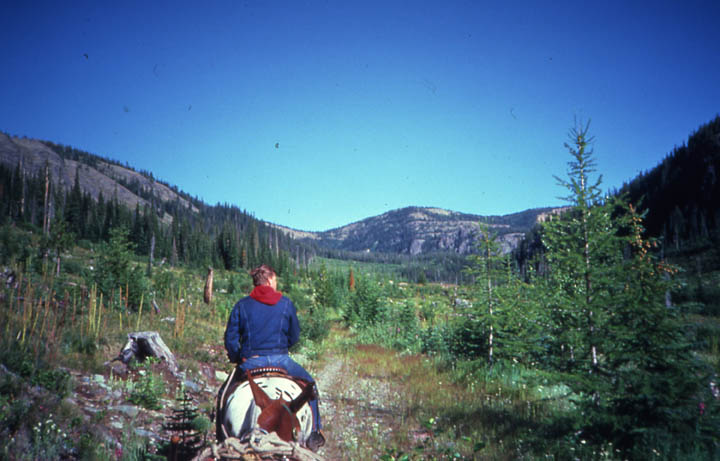 A person on horseback, traveling down a narrow path through an open forested valley, under a deep blue sky.