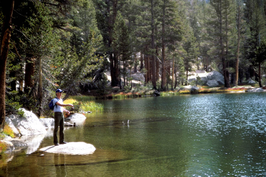 A man standing on a rock fly fishing along the edge of a clear green lake, with tall forest trees behind.