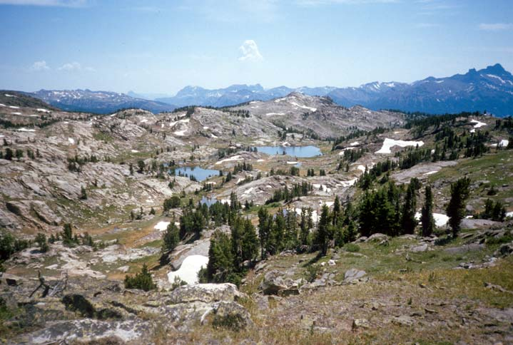 An open alpine landscape of bare rock, dotted with small ponds, patches of white snow, and clusters of green pine. High rocky peaks rise in the far distance along the horizon.