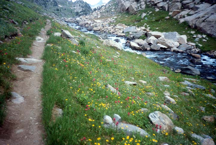 An iconic scene of a narrow dirt path winding through a green meadow freckled with yellow and pink wildflowers. A rushing stream flows nearby, leading away into the distance.