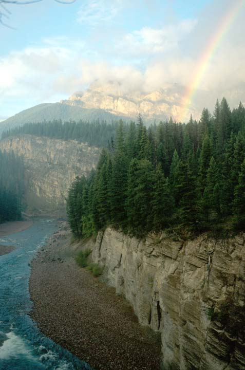A pristine river flowing through the base of a wide canyon, a brilliant rainbow rising from the dense forest above.